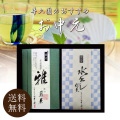 【井六園のお中元・お得セット】煎茶(慶光)・水出し煎茶(10g×10パック)ATS-10