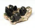 モリオン(黒水晶)高品質クラスター No.67