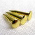 真鍮釘 2分 10g