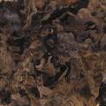 【国産無農薬木耳500g】    伊勢音特撰・無農薬・熊本産・最高級品・栄養価・カルシウム豊富・業務用・卸価格
