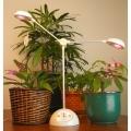 """家庭用植物育成LEDスタンド """"マイプラント"""" WK-12-2 <和光電研>"""