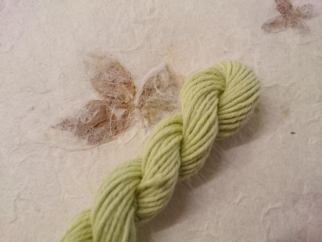 草木染 オリーブ 黄緑