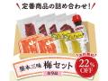 K2101 熊本三昧梅セット【冷凍便の為他商品と同時購入不可】