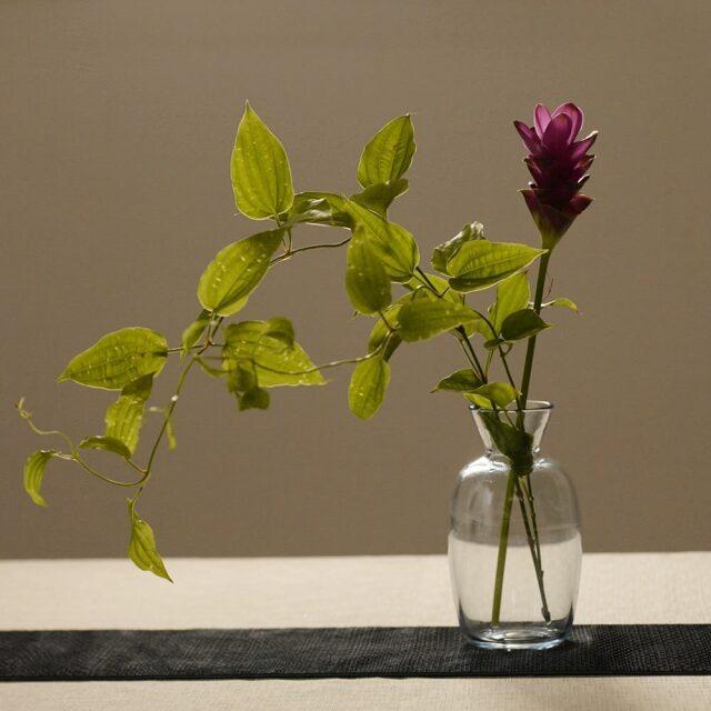 神澤麻紀 blue flower vase