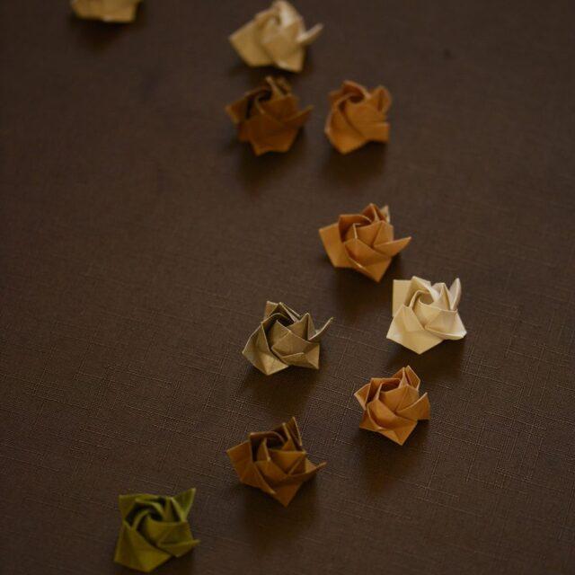 器のしごと&IVORYコラボproject 薔薇モチーフ gift wrapping♪