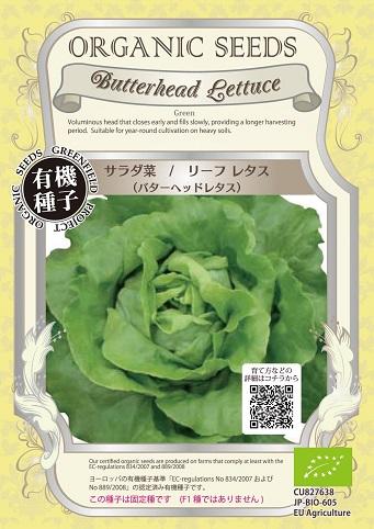 有機種子バターヘッドレタス
