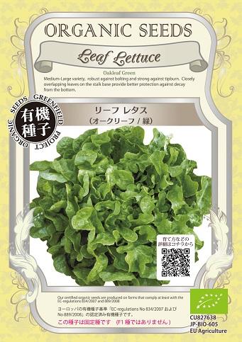 有機種子 オークリーフ緑