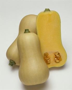 タキイバターナッツ