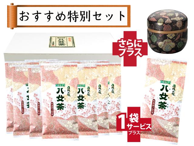 【T-173・サ】特選特上煎茶 10+1袋+プレゼント品