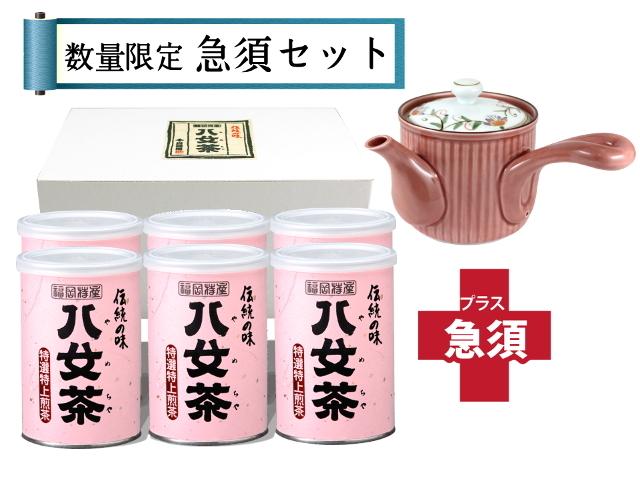【T-91・サ】特選特上煎茶 6缶+急須