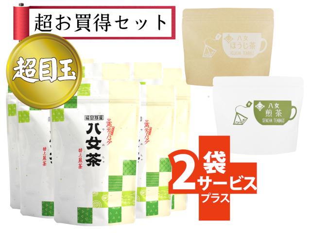 【T-120・テ】タグ付煎茶ティーバッグ10+新商品ティーバッグ2袋