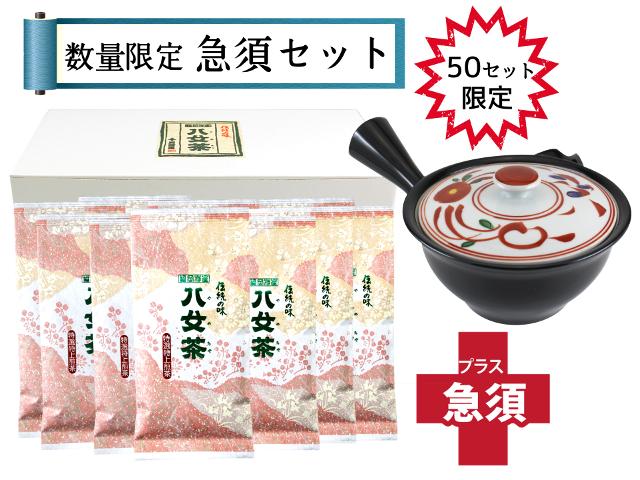 【T-176・サ】特選特上煎茶 10袋+急須