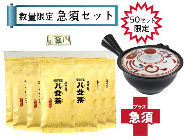 【T-177・ニ】特上煎茶 10袋+急須