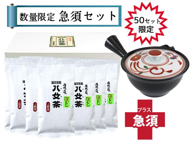 【T-179・ト】マイルド深むし上煎茶 10袋+急須