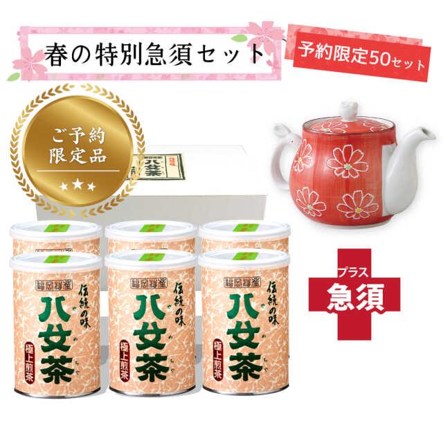 【T-709・ホ】極上煎茶100g 6缶+茶用品