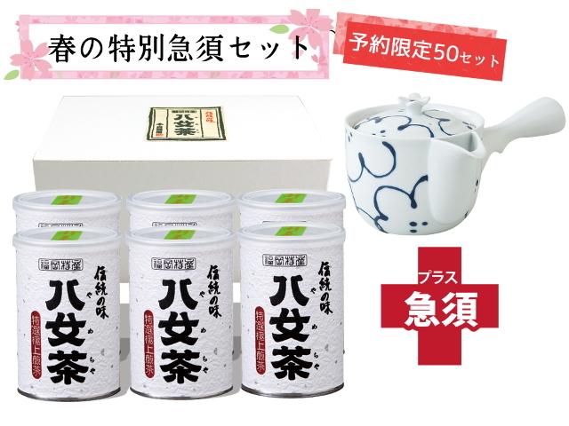 【T-713・ヘ】特選極上煎茶100g 6缶+茶用品