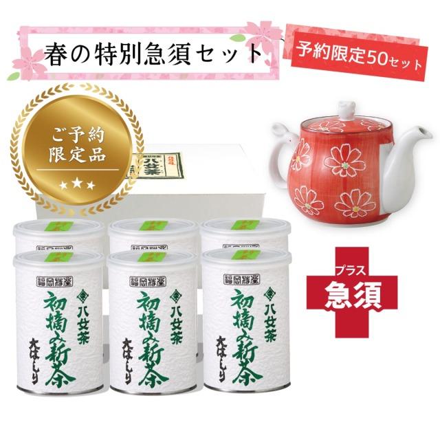 【T-716・16】初摘み新茶・大はしり100g 6缶+茶用品
