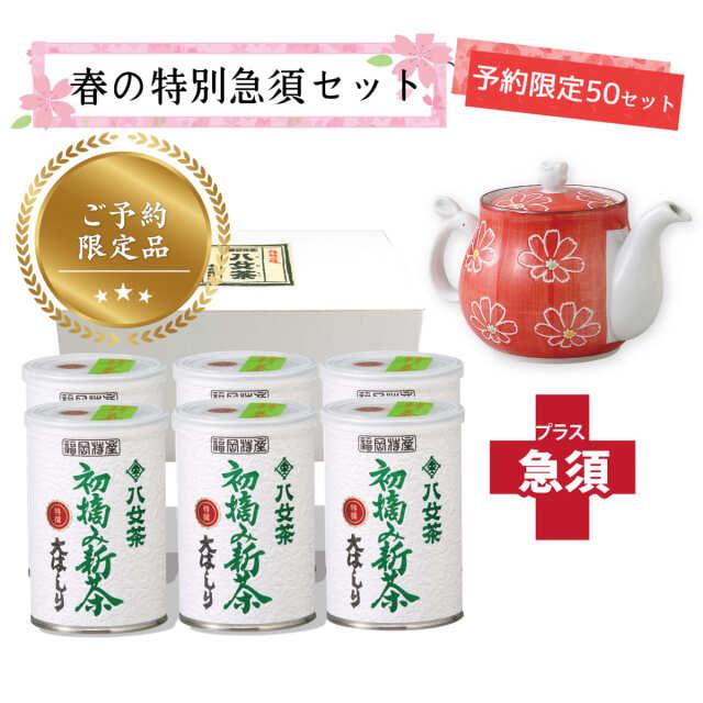 【T-718・18】初摘み新茶・特選大はしり 6缶+茶用品