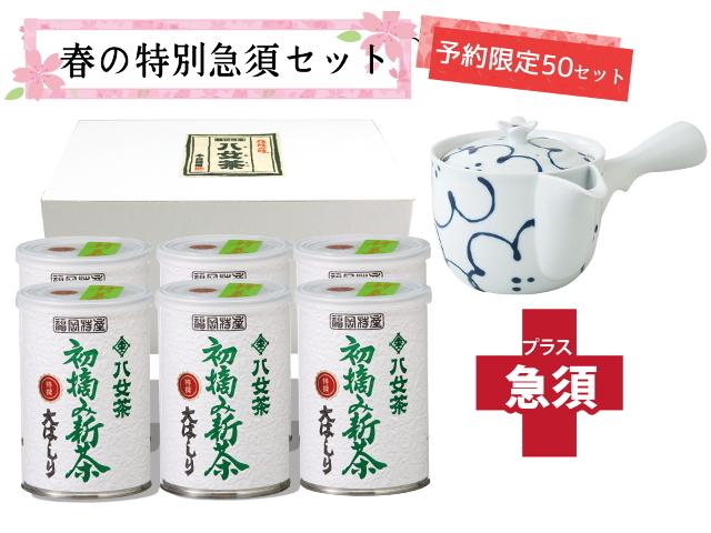 【T-718・18】初摘み新茶・特選大はしり100g 6缶+茶用品