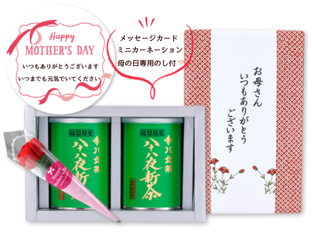 【G-990】限定品・八十八夜新茶 100g×2缶 母の日特別ギフトセット