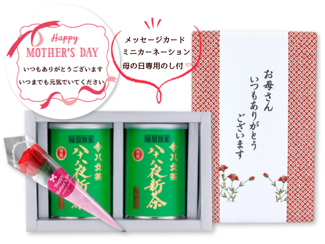 【G-991】限定品・特選八十八夜新茶 100g×2缶 母の日特別ギフトセット