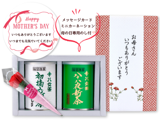 【G-992】初摘み新茶・大はしり◇限定品・八十八夜新茶 100g×2缶 母の日特別ギフトセット