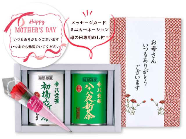 【G-993】初摘み新茶・特選大はしり◇限定品・特選八十八夜新茶 100g×2缶 母の日特別ギフトセット