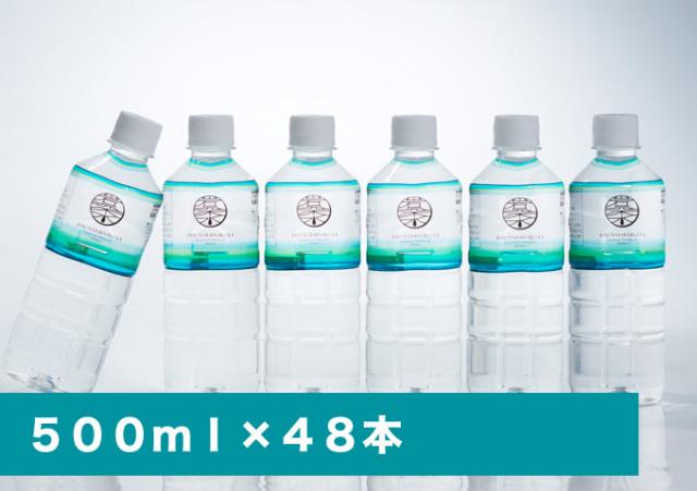 岩深水 500mlペットボトル48本