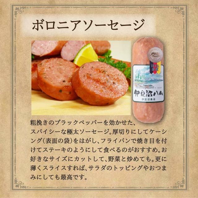 IFFA金賞ボロニアソーセージ