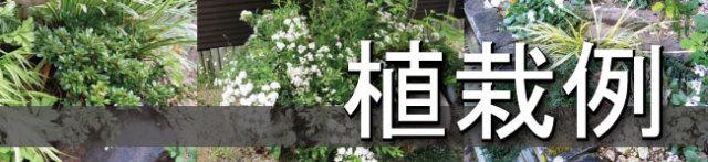 植栽例から選ぶ