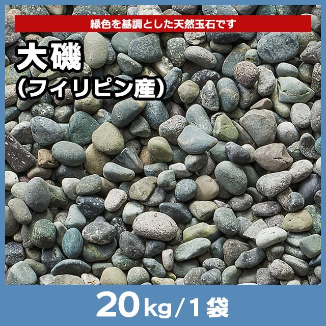 大磯(フィリピン産) 20kg