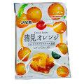 ドライフルーツ清見オレンジ20g