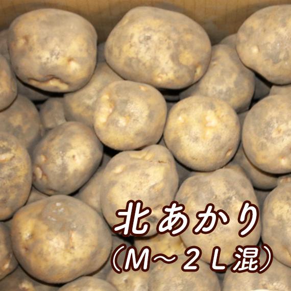 北あかり(M~2L混)【送料込み・発送は11月上旬頃から】