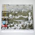恋に過ごせし宵/エディ・ヒギンズ・トリオ(CD/JP)