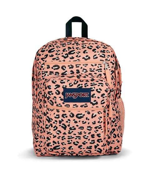 BIG STUDENT - Pink Party Cat