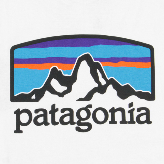 patagonia,パタゴニア,長袖Tシャツ