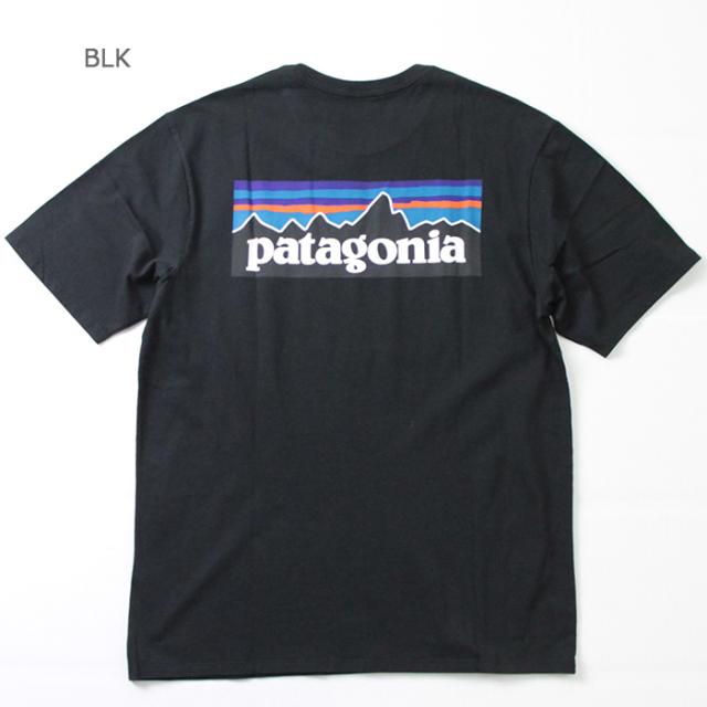 patagonia,パタゴニア,ロゴT,38535