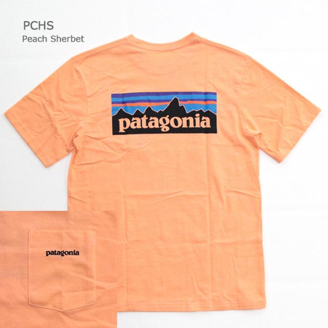 patagonia,パタゴニア,Tシャツ
