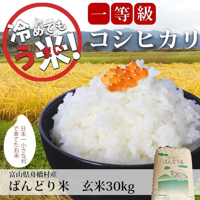 富山県産 ばんどり米 コシヒカリ 30kg 玄米