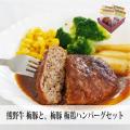 サンフレックス 熊野牛梅豚と梅豚梅鶏ハンバーグセット