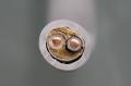第二種電気工事士技能試験練習用材料 絶縁ビニルシースケーブル丸形 2.0mm 2心 (VVR) 1m