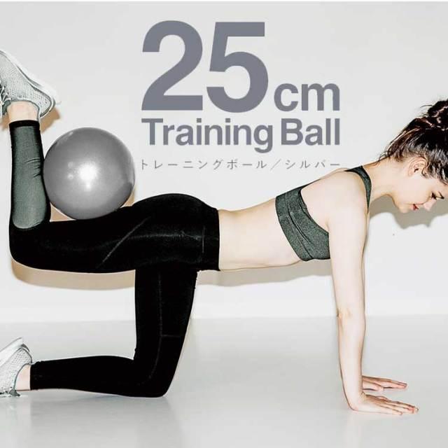 La-VIE(ラ・ヴィ) トレーニングボール 25cm シルバー