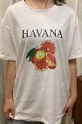 """Italy """"HAVANA"""" シトラス ビッグ Tシャツ"""