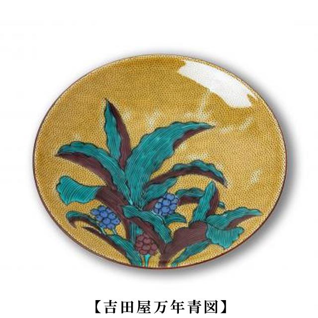 豆皿 名品コレクション(吉田屋万年青図)