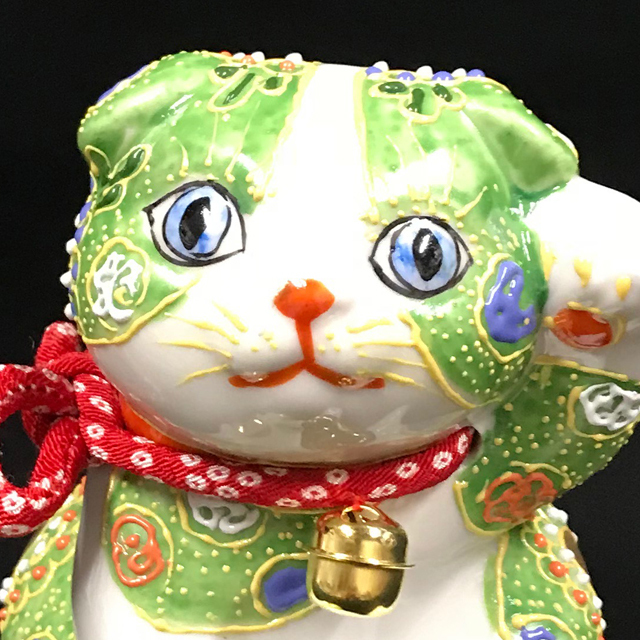 子猫スコティッシュフォールド ヒワ