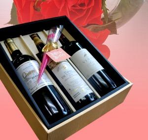 ワイン好きなお母様へ・・赤ワイン3本セット <br>カーネーション&母の日カードを添え【送料無料】
