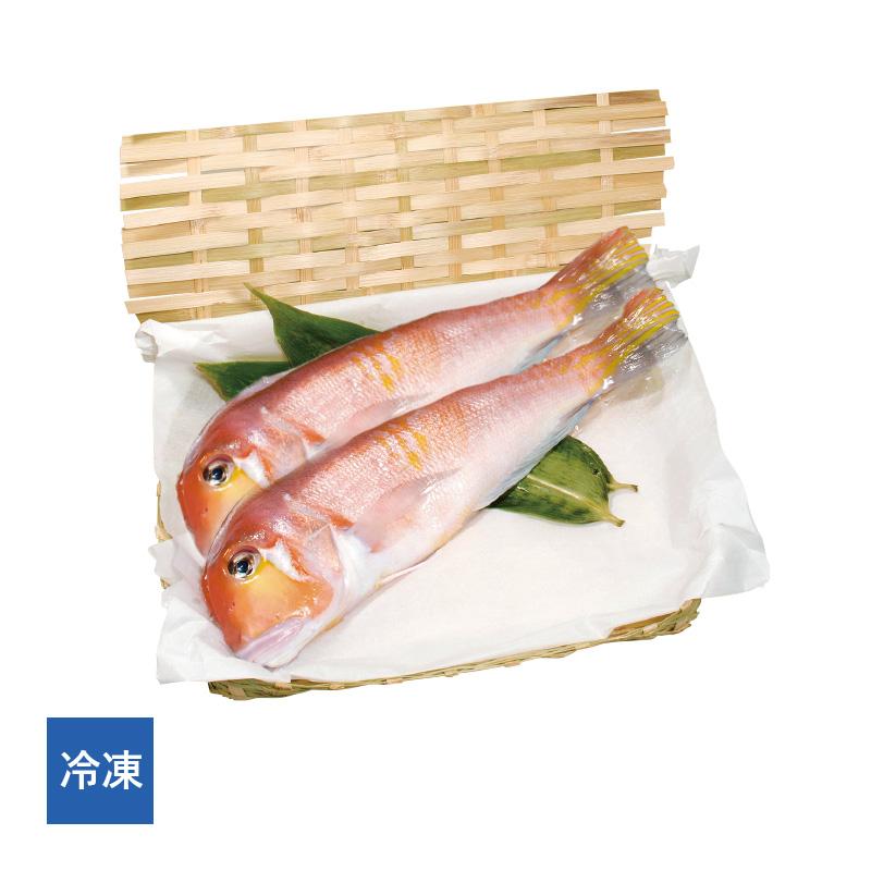【冷凍】 若狭ぐじ(甘鯛)一汐 2尾[_216503_]