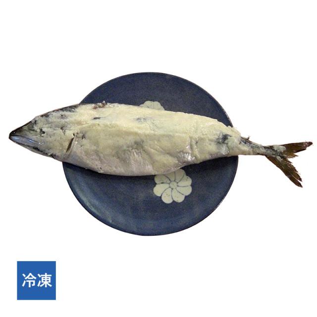 【冷凍】馴れ鯖(なれさば)(約40cm×1尾)[_217902_]