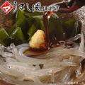 【予約開始です】春を告げる・若狭のいさざ(シロウオ)京風煮 特大 約750g【保冷シート込】【チルド商品】[_117004_]