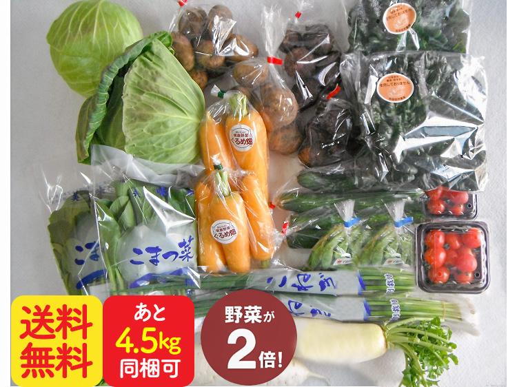 ダブル九州野菜セット【10.5kg】